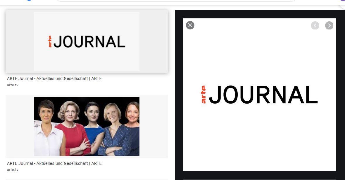 Beiträge für arte Journal